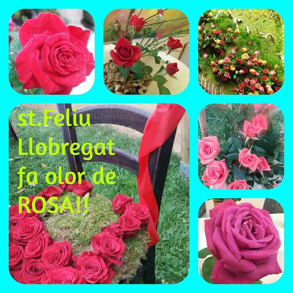 Sant Feliu del Llobregat fa olor a Rosa